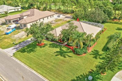 Port Saint Lucie Single Family Home For Sale: 8019 Plantation Lakes Drive