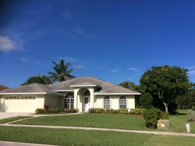 Royal Palm Beach Single Family Home For Sale: 138 Van Gogh Way