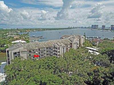 North Palm Beach Condo For Sale: 11370 Twelve Oaks Way #413