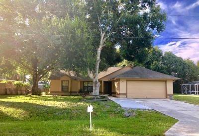 Fort Pierce Single Family Home For Sale: 5408 Paleo Pines Circle