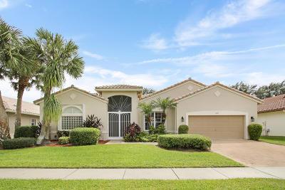 Boynton Beach Single Family Home For Sale: 6828 Chimere Terrace