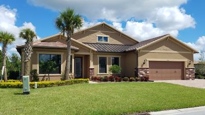 Palm City Single Family Home For Sale: 4841 SW Sand Avenue