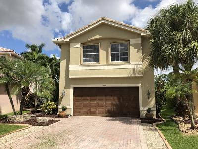 Coral Springs Single Family Home For Sale: 11667 NW 54 Street