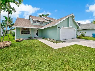 Boynton Beach Single Family Home For Sale: 1802 Banyan Creek Circle