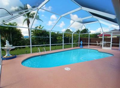 Port Saint Lucie Single Family Home For Sale: 548 SW Crawfish Drive