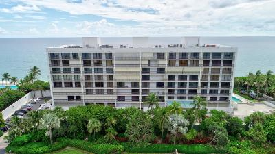 Broward County, Palm Beach County Rental For Rent: 2000 Ocean Boulevard #Apt 302