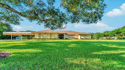 Boynton Beach Single Family Home For Sale: 6589 O Hara Avenue