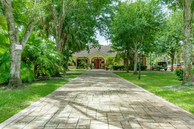 Boynton Beach Single Family Home For Sale: 4300 White Feather Trail