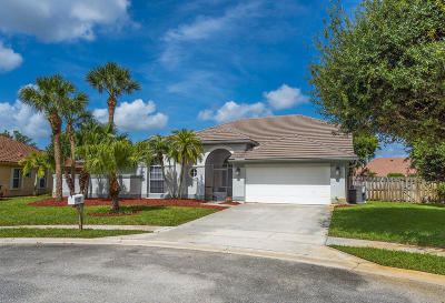 Lake Worth Single Family Home For Sale: 7521 Gilmour Court