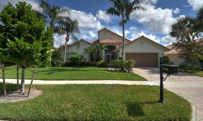 Boynton Beach Single Family Home For Sale: 7288 Amber Falls Lane