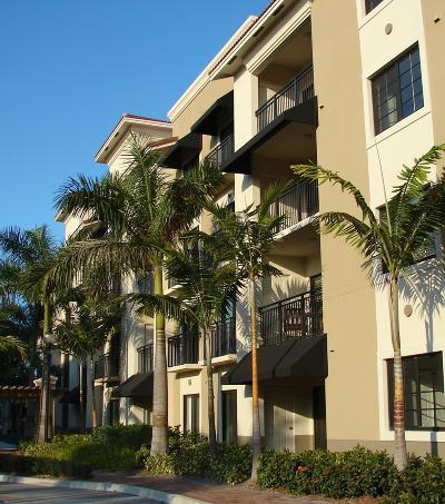 Palm Beach Gardens Rental For Rent: 4907 Midtown Lane #1104