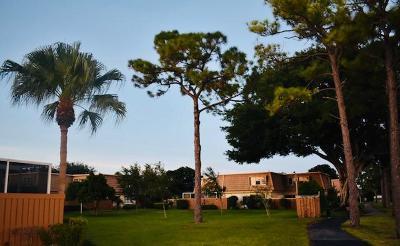 Palm Beach Gardens Rental For Rent: 4300 Hazel Avenue #A