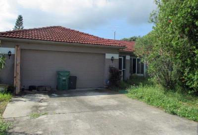 Port Saint Lucie Single Family Home For Sale: 2698 SE Bikas Lane