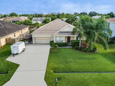 Port Saint Lucie Single Family Home For Sale: 672 SW McCall Road