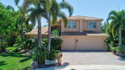 Lake Worth Single Family Home For Sale: 7946 Sunburst Terrace