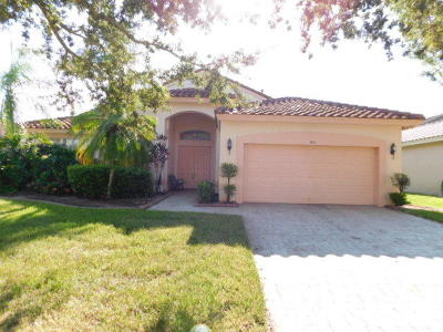 Port Saint Lucie Single Family Home Contingent: 431 NW Coolwater Court