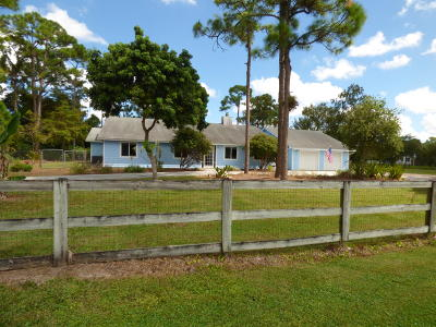 Lake Worth Single Family Home For Sale: 3470 Custer Avenue