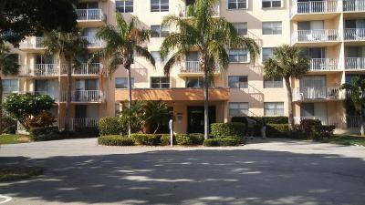 West Palm Beach Rental For Rent: 500 Executive Center Drive #1-A