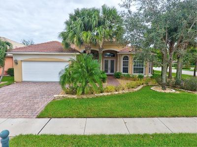 Lake Worth Single Family Home For Sale: 6842 Milani Street