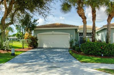 Boynton Beach Single Family Home For Sale: 5852 Island Reach Lane