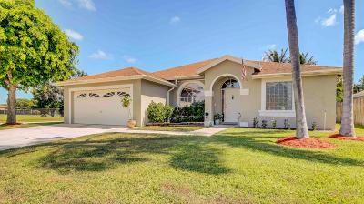 Boynton Beach Single Family Home Contingent: 9146 Patina Drive
