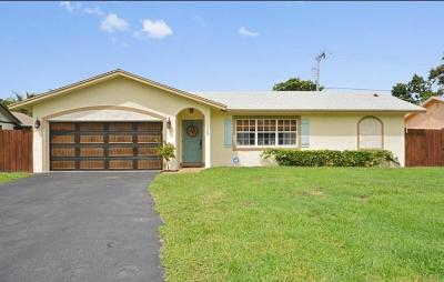 Delray Beach Single Family Home For Sale: 623 Lindell Boulevard