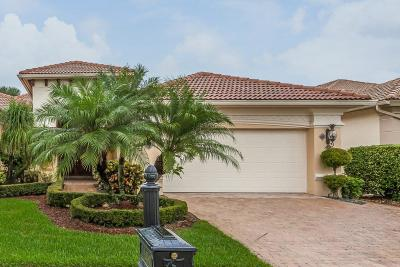 Delray Beach Single Family Home For Auction: 16480 Braeburn Ridge Trail