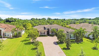 Palm Beach Gardens Single Family Home For Sale: 7864 Arbor Crest Way