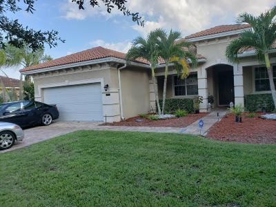 Greenacres Single Family Home For Sale: 6705 Bulrush Court