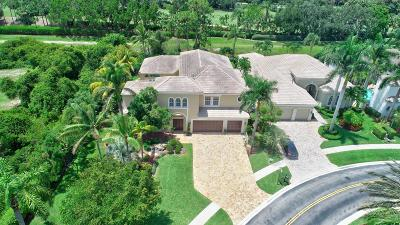 Delray Beach Single Family Home For Sale: 6669 Grande Orchid Way
