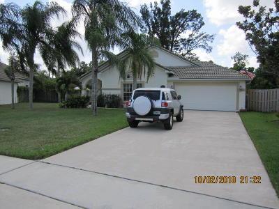 Boynton Beach Single Family Home For Sale: 4479 Sunset Cay Circle