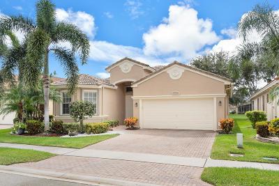 Boynton Beach Single Family Home For Sale: 7900 Lando Avenue
