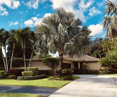 Palm Beach Gardens Single Family Home For Sale: 6684 Eastpointe Pines Street