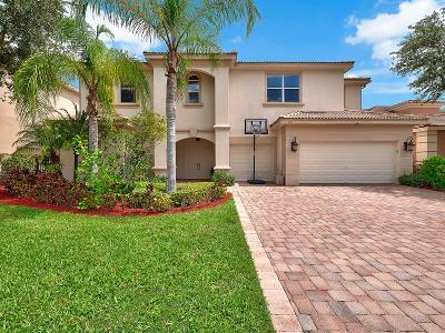 Palm Beach Gardens Single Family Home For Sale: 198 Sedona Way