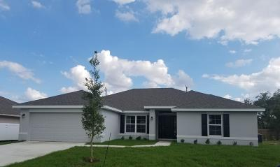 Port Saint Lucie Single Family Home For Sale: 4975 NW Fitzgerald Avenue