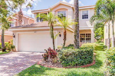 Royal Palm Beach Single Family Home For Sale: 669 Garden Cress Trail