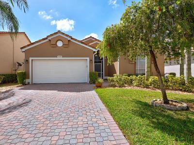 Boynton Beach Single Family Home For Sale: 6918 Camille Street