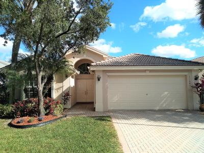 Boynton Beach Single Family Home For Sale: 11641 Castellon Court