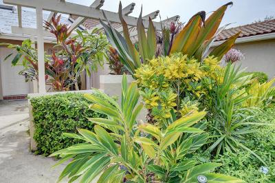 Boca Raton Single Family Home For Sale: 6924 Barbarossa Street