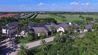 Palm Beach County Single Family Home For Sale: 2855 Hurlingham Drive