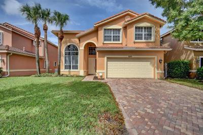 Boynton Beach Single Family Home For Sale: 12373 Colony Preserve Drive