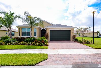 Port Saint Lucie Single Family Home For Sale: 11157 SW Lake Park Drive