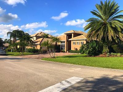 Port Saint Lucie Single Family Home For Sale: 503 NW Ashton Way