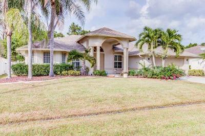 Port Saint Lucie Single Family Home For Sale: 5921 NW Theda Lane