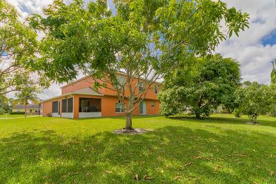 Port Saint Lucie Single Family Home For Sale: 101 SW Donna Terrace
