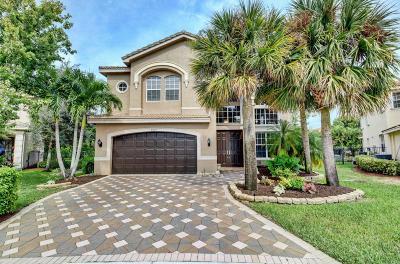 Boynton Beach Single Family Home For Sale: 8947 Hidden Acres Drive