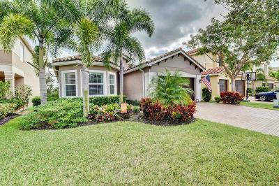 Boynton Beach Single Family Home For Sale: 11509 Mantova Bay Circle