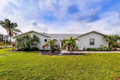 Port Saint Lucie Single Family Home For Sale: 698 SE Delancey Lane