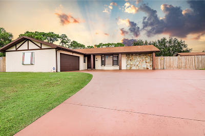 Port Saint Lucie Single Family Home For Sale: 933 SW Bay State Road
