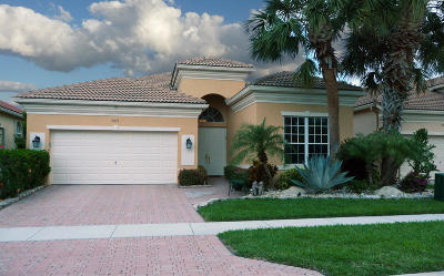 Delray Beach Single Family Home Contingent: 7071 Demedici Circle